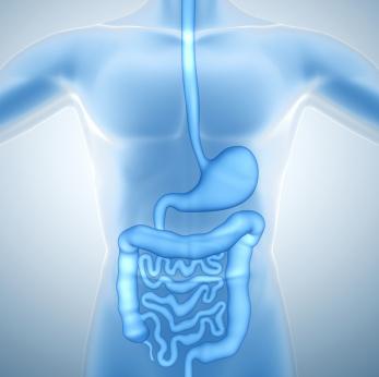irritable bowel disease