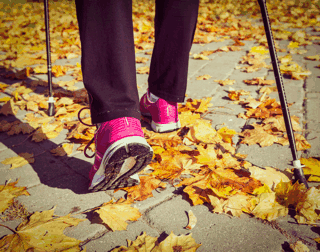 Keep your immune system healthy this Fall