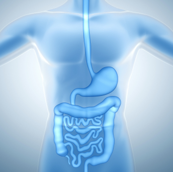 irritable bowel disease